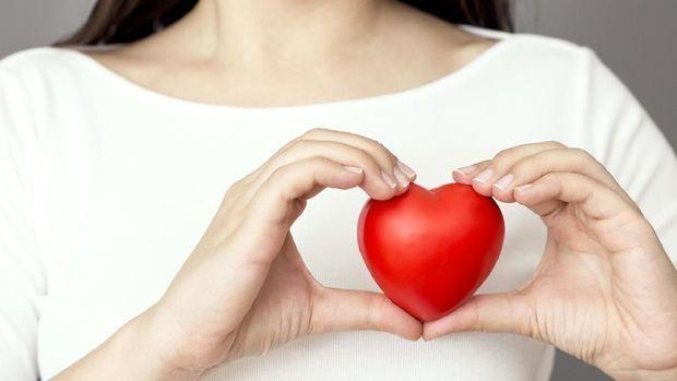 Holding heart, vertical