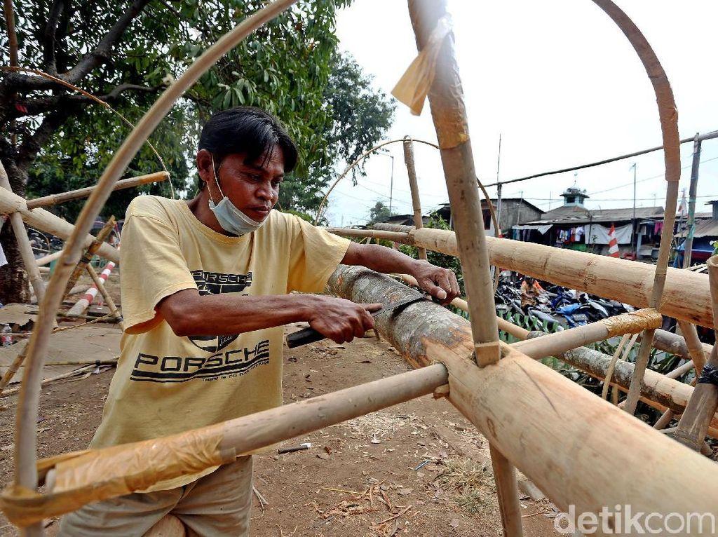 Jelang HUT RI, Penjualan Pohon Pinang Banjir Pesanan