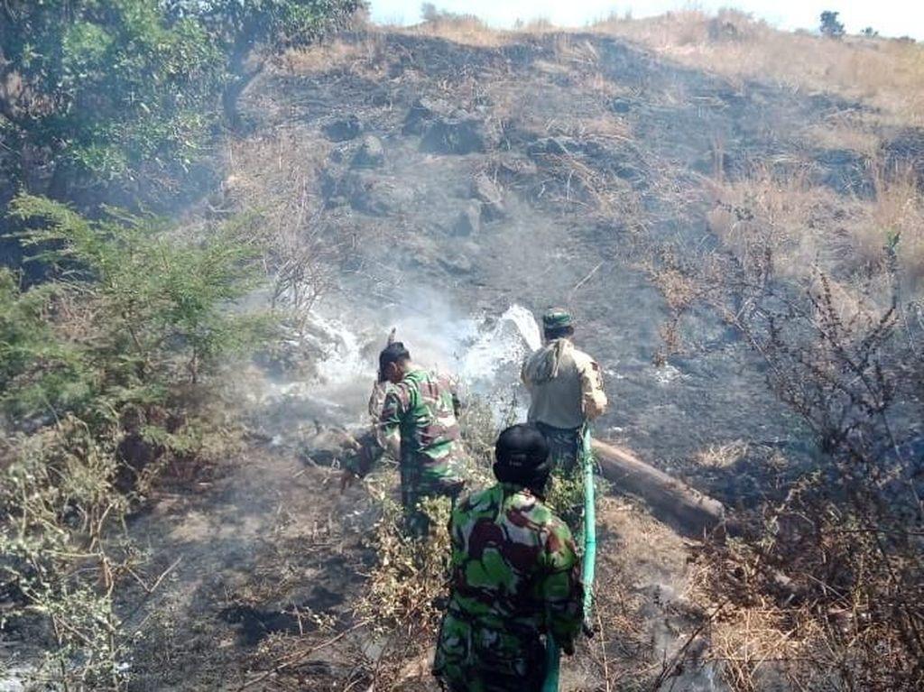 Puncak Kemarau, Lahan di Geopark Tambora Terbakar