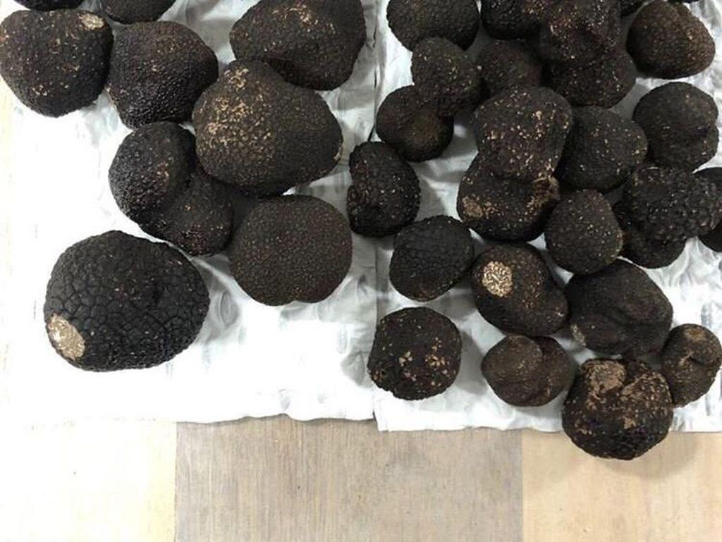 Wah! Chef Arnold Unggah Foto 2,5 Kg Black Truffle Seharga 75 Juta