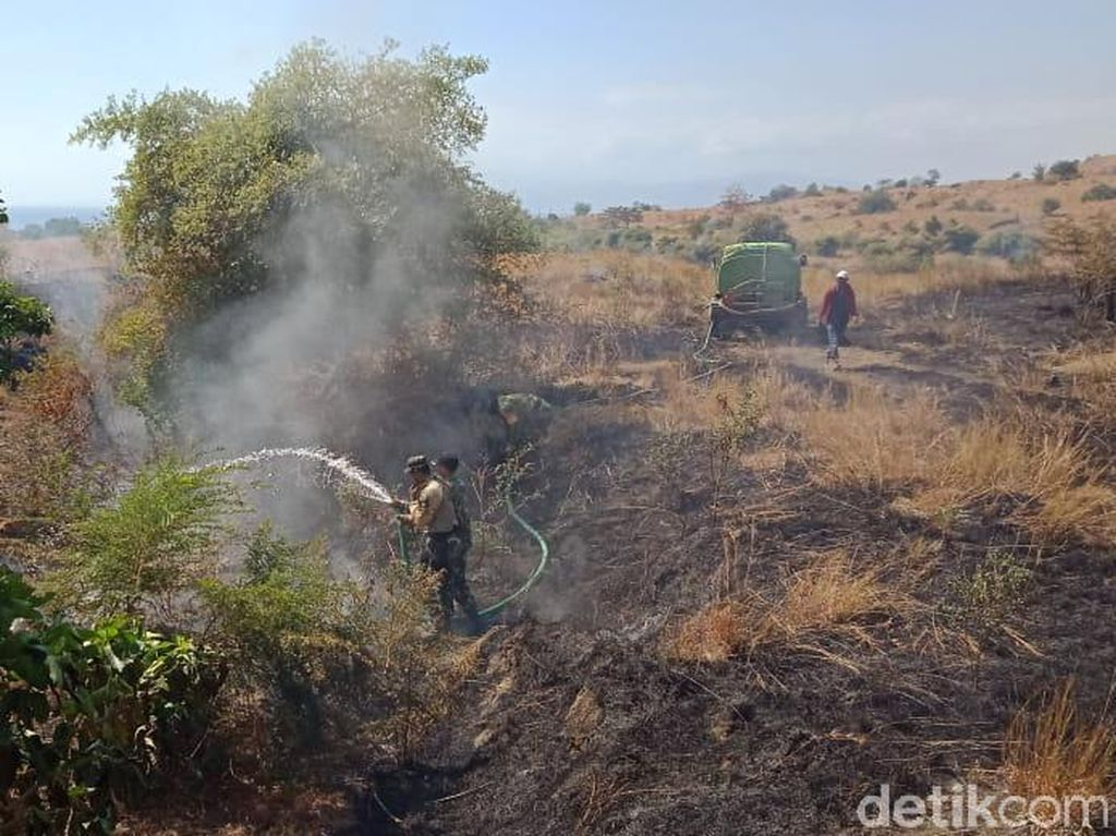 TN Tambora: Kebakaran Dipicu Api dari Pembersihan Lahan Warga