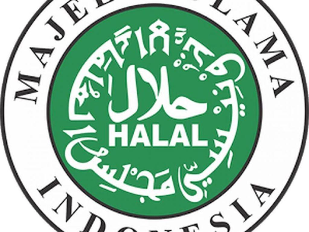 MUI Diminta Urungkan Niat Rebut Kembali Otoritas Sertifikasi Halal