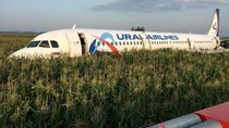 Diserang Camar, Pesawat Maskapai Rusia Terpaksa Mendarat Darurat