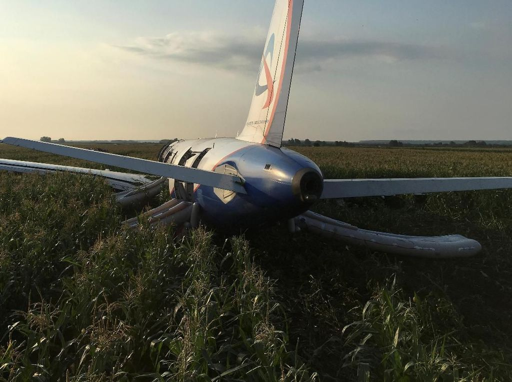 Daratkan Pesawat di Ladang Jagung, 2 Pilot Dapat Penghargaan dari Putin