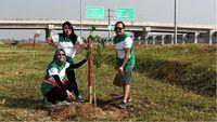 Djarum Foundation Hijaukan 87 KM Ruas Tol Ngawi-Kertosono