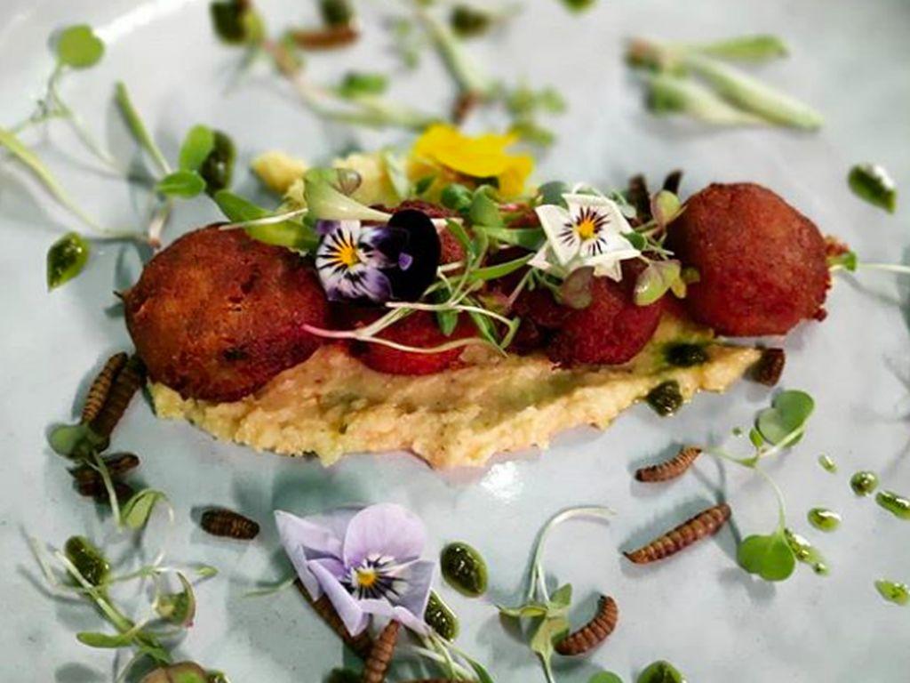 Restoran di Afrika Selatan Ini Hanya Sajikan Makanan dari Serangga