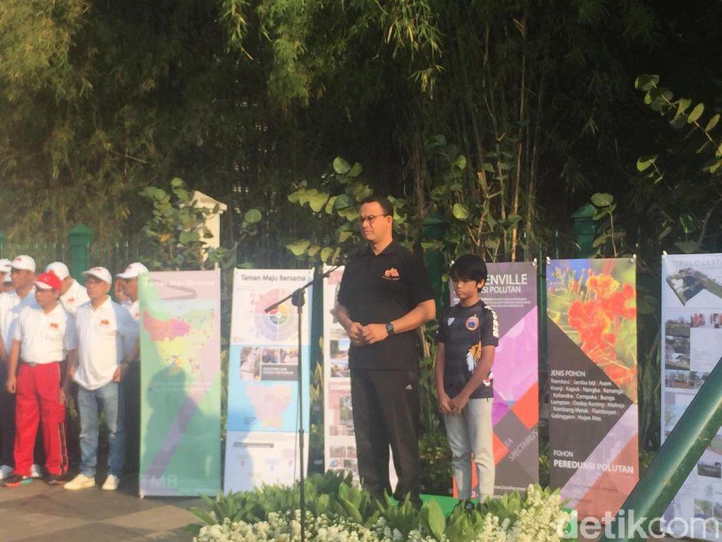 Kurangi Polusi Udara, Anies Tanam Bougenville di Sepanjang Jalan Sudirman