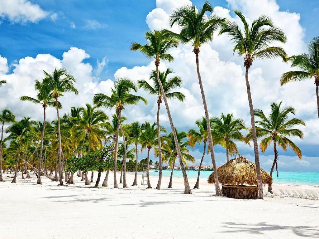 Liburan ke Dominika, Pasangan Turis Malah Keracunan Pestisida