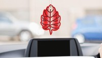 Penembakan Pria Kulit Hitam di AS Dipicu Parfum Mobil Digantung di Spion Tengah, Kok Bisa?