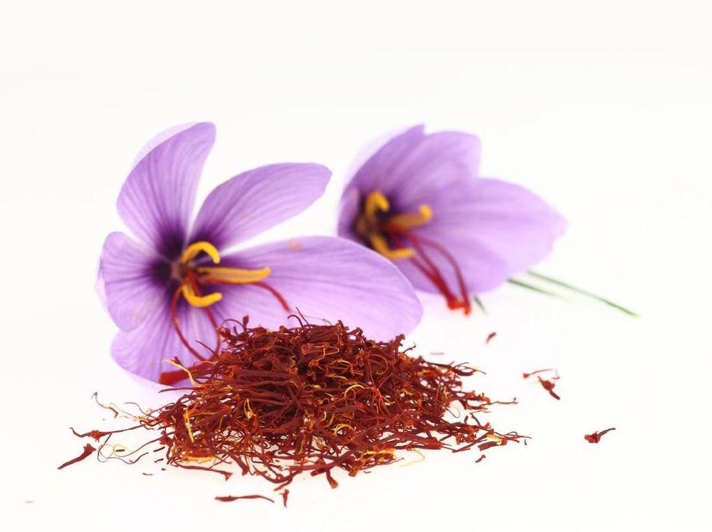 Cabai Rawit dan Bunga Safron Bisa Jadi Bahan Alami untuk Produk Kecantikan