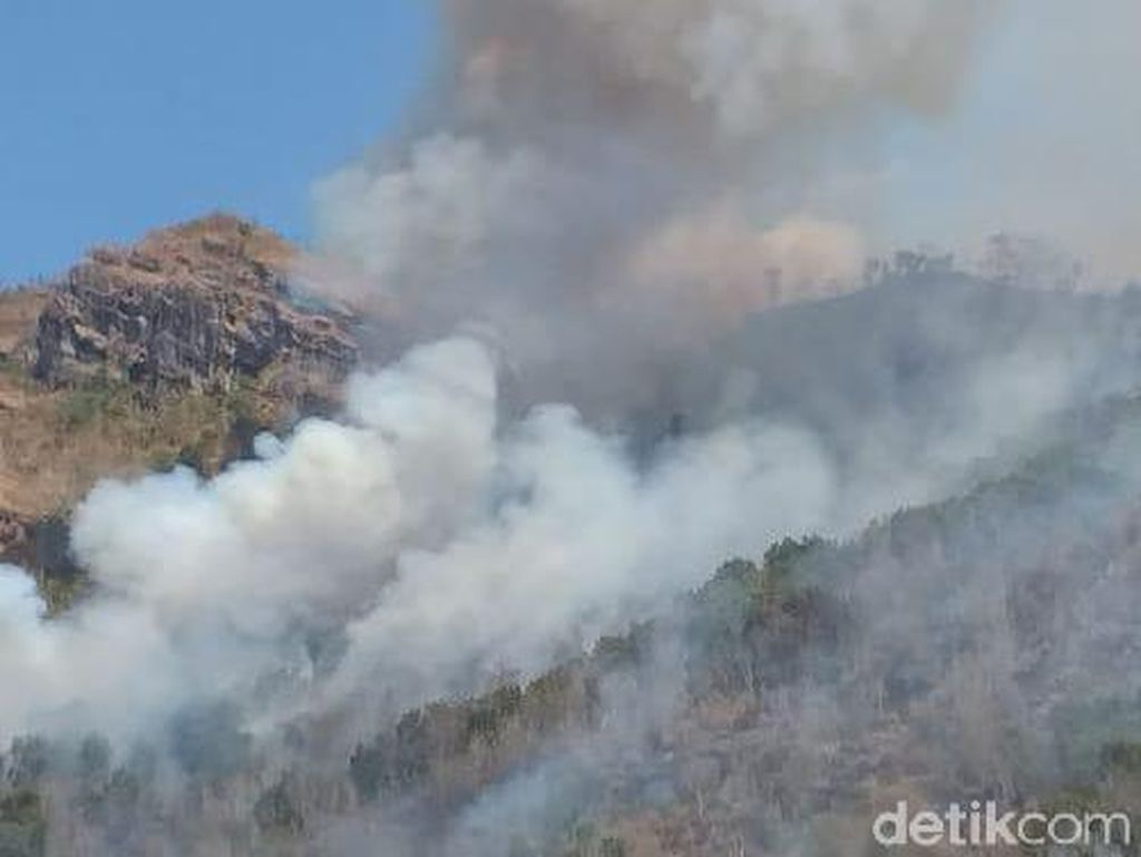 Hampir 24 Jam, Kebakaran Hutan di Wonogiri Belum Berhasil Dipadamkan