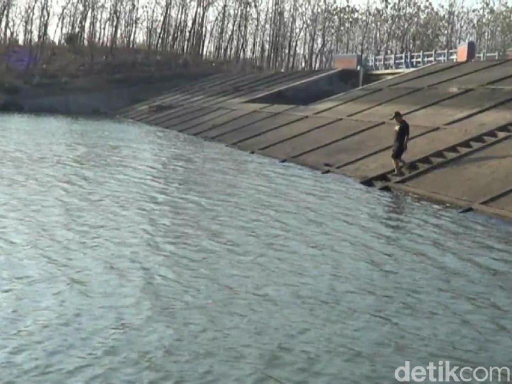 Air Embung Krikilan Pasuruan Menyusut 3 Meter, Tak Bisa Dipakai Irigasi