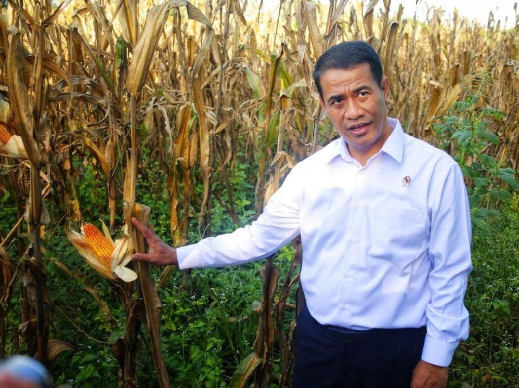 Sosialisasi RUU Budi Daya, Mentan: Ini Upaya Tingkatkan Peran Petani
