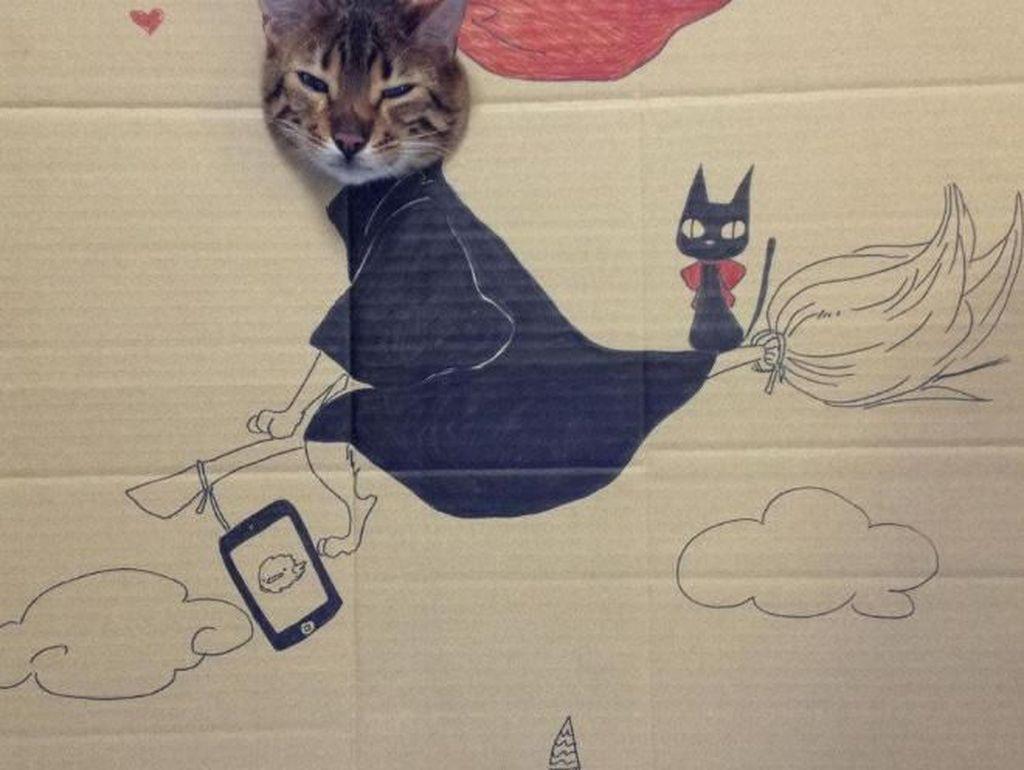 Kreatif! Ketika Si Kucing Cosplay Pakai Kardus