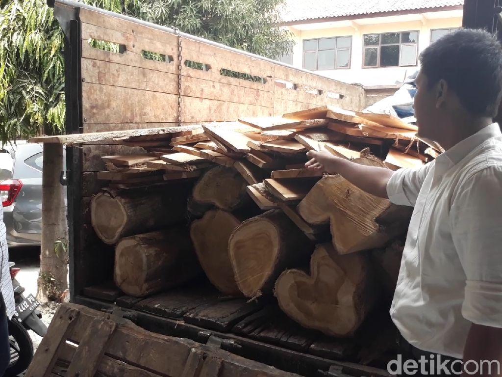 2 Pelaku Illegal Logging di Brebes Diringkus Polisi
