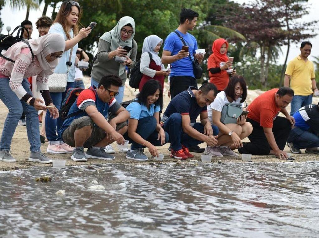 Pertamina Lepas 100 Ekor Tukik di Pantai Kuta Bareng Pelanggan