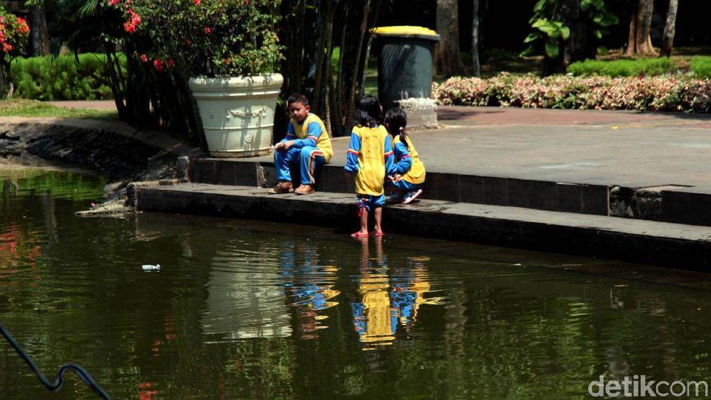 Menikmati Asrinya Taman Spathodea di Jagakarsa