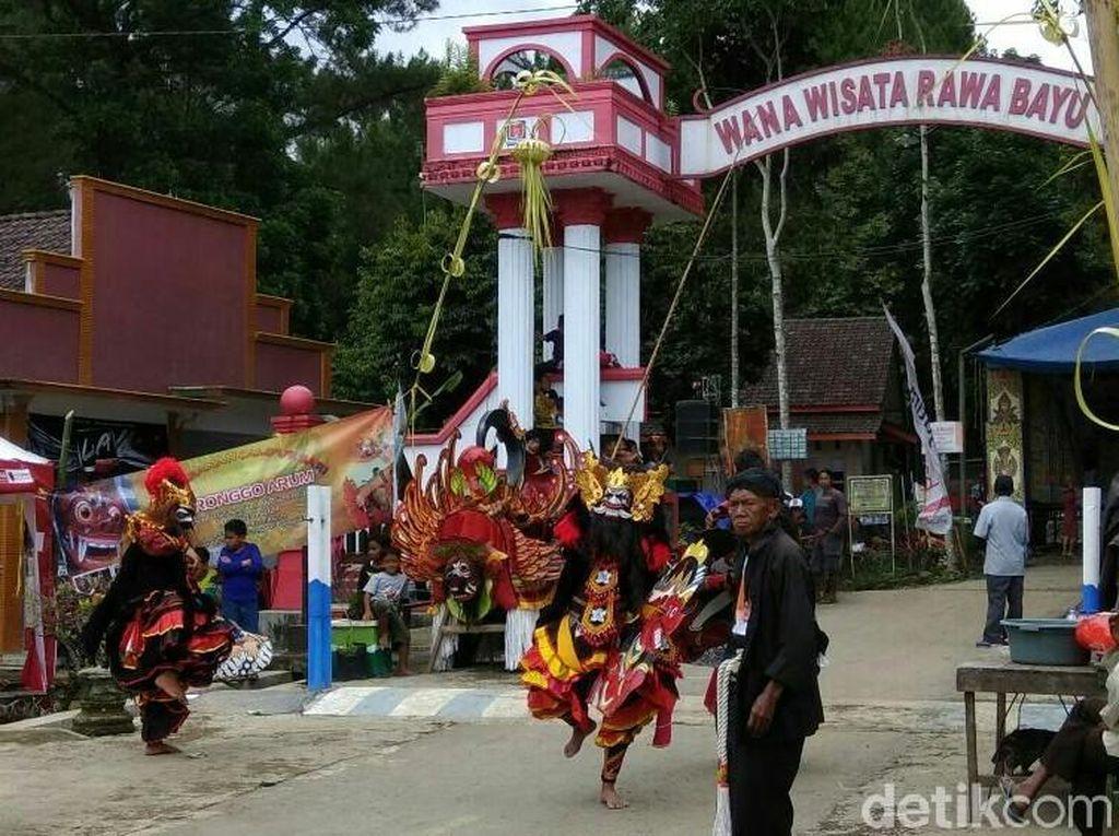 Foto: Lihat Lagi Festival Keren Rowo Bayu yang Mirip Desa Penari