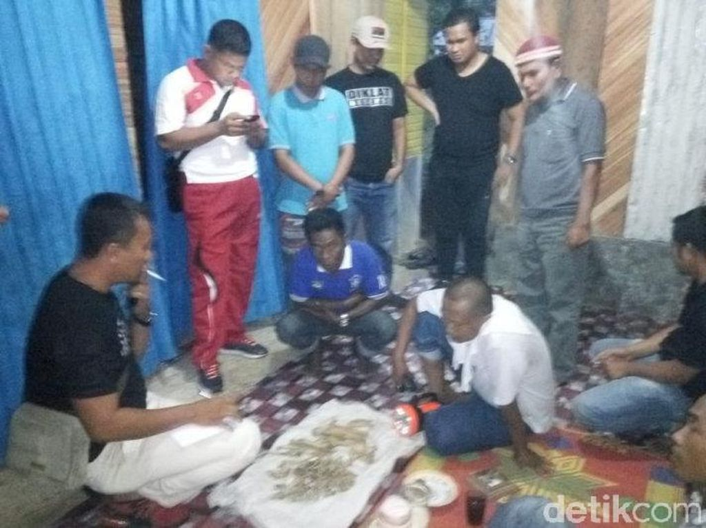 Penjual Kerangka Tulang Harimau di Sumbar Diciduk