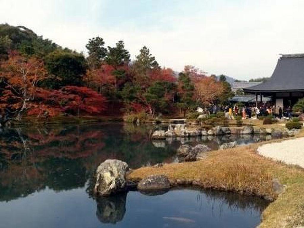 Foto: Cantiknya Kuil Tenryu-Ji di Musim Gugur