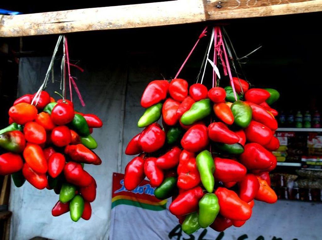Dari Dieng hingga Toraja, Ini 5 Jenis Cabai Super Pedas Indonesia