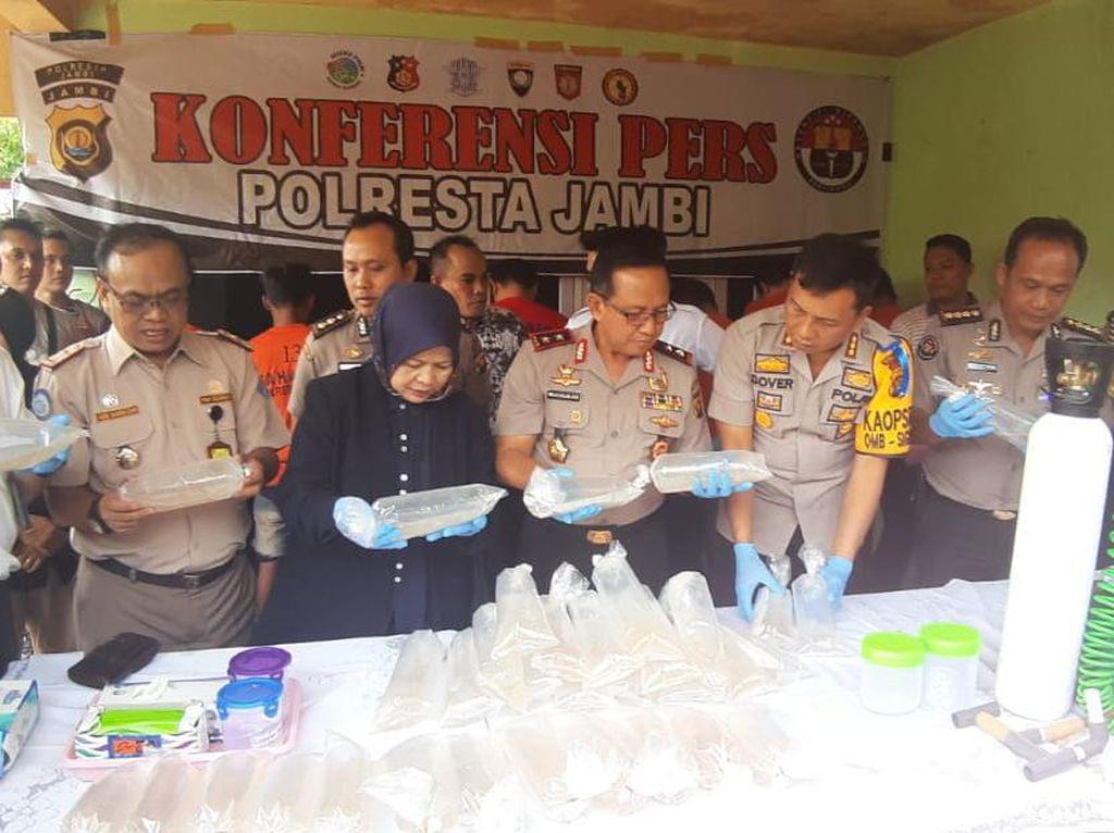 Polisi Gerebek Gudang Penyimpanan 161 Ribu Benih Lobster di Jambi