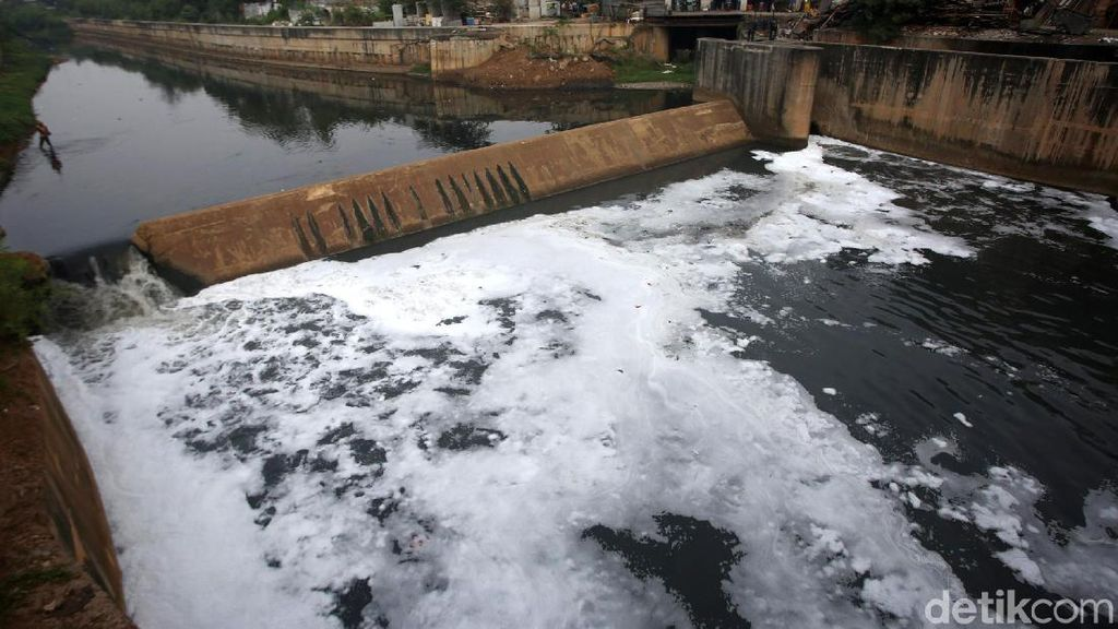 Busa Putih Kembali Cemari Aliran Kanal Banjir Timur