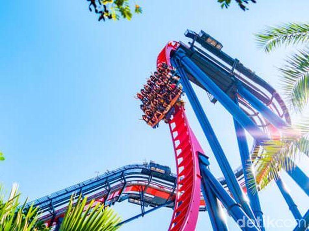 Bos Taman Hiburan Contohkan Naik Roller Coaster Tanpa Banyak Teriak