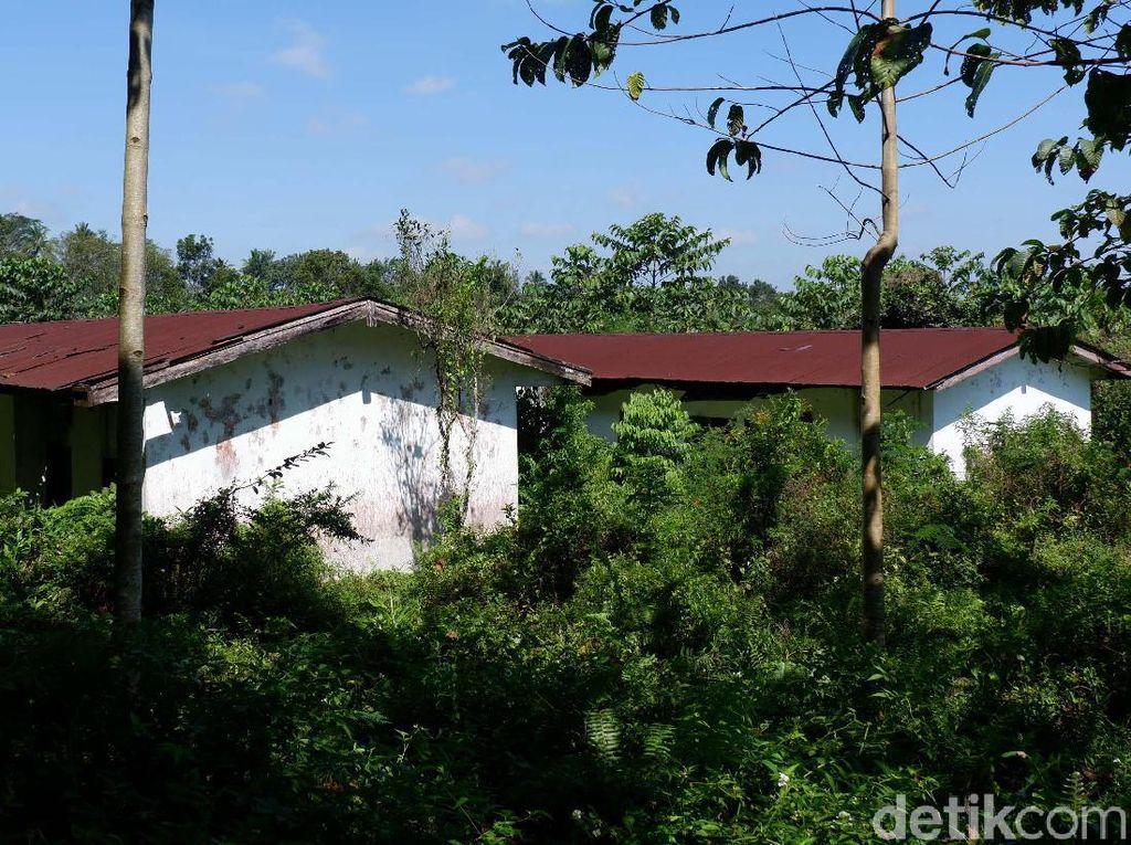 Ini Penyebab Kampung Hilang di Lokasi Diduga Tempat KKN Desa Penari