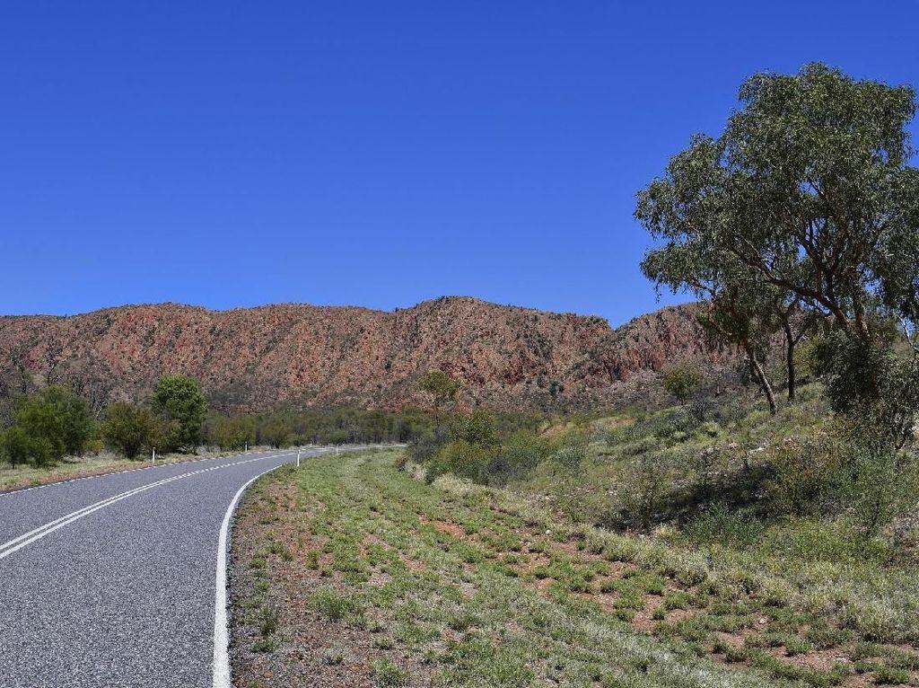 Foto: 5 Rute Road Trip Seru di Australia