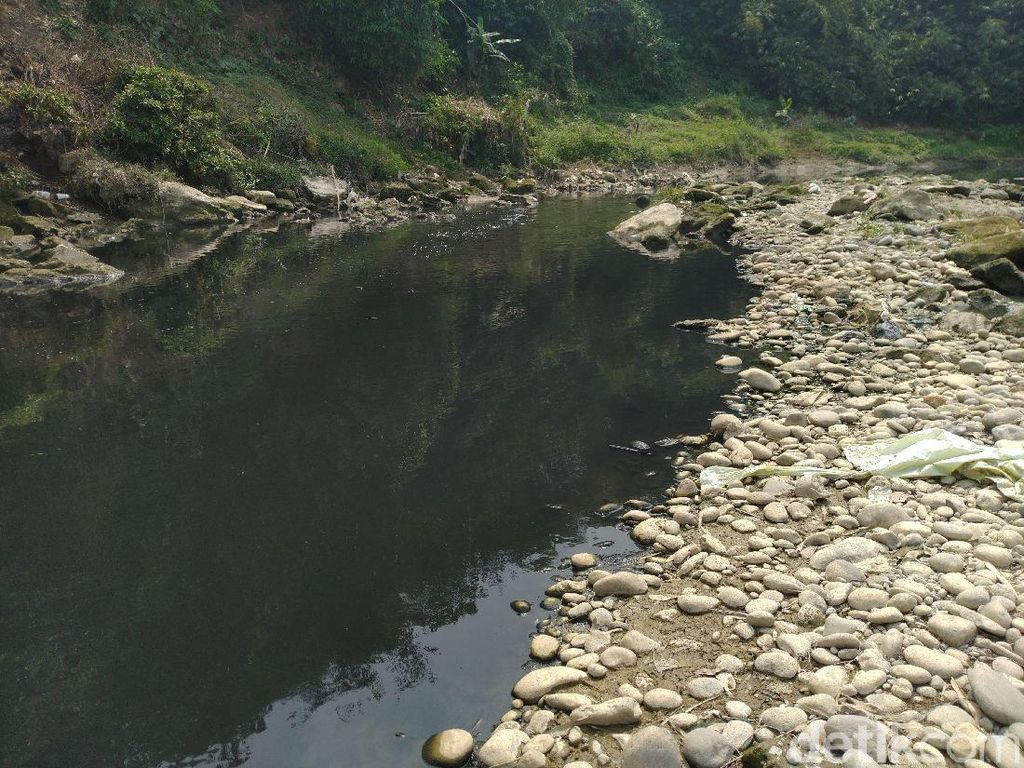 Ombudsman: Sungai Cileungsi Tercemar Berat