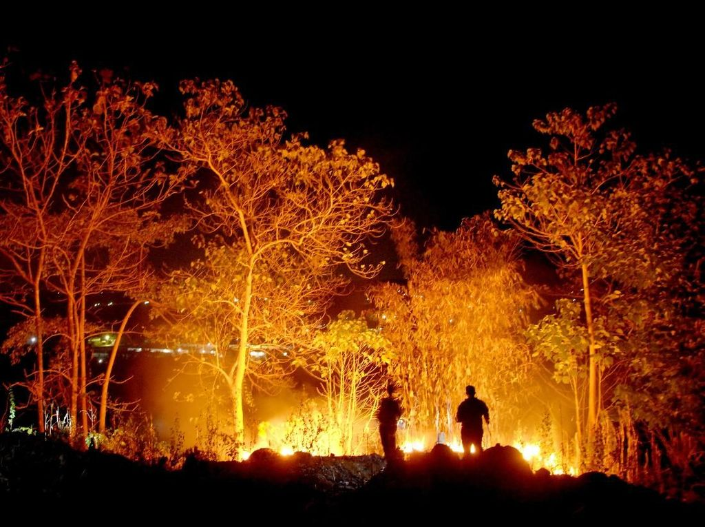 Petugas Berjibaku Padamkan Kebakaran Lahan di Gowa