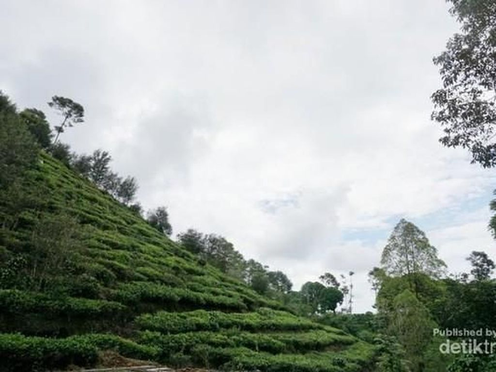 Bentuk Borobudur Ngawi Tak Seperti di Magelang