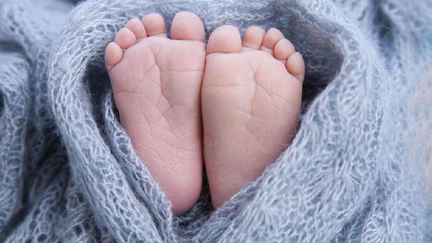 Ilustrasi kaki bayi/