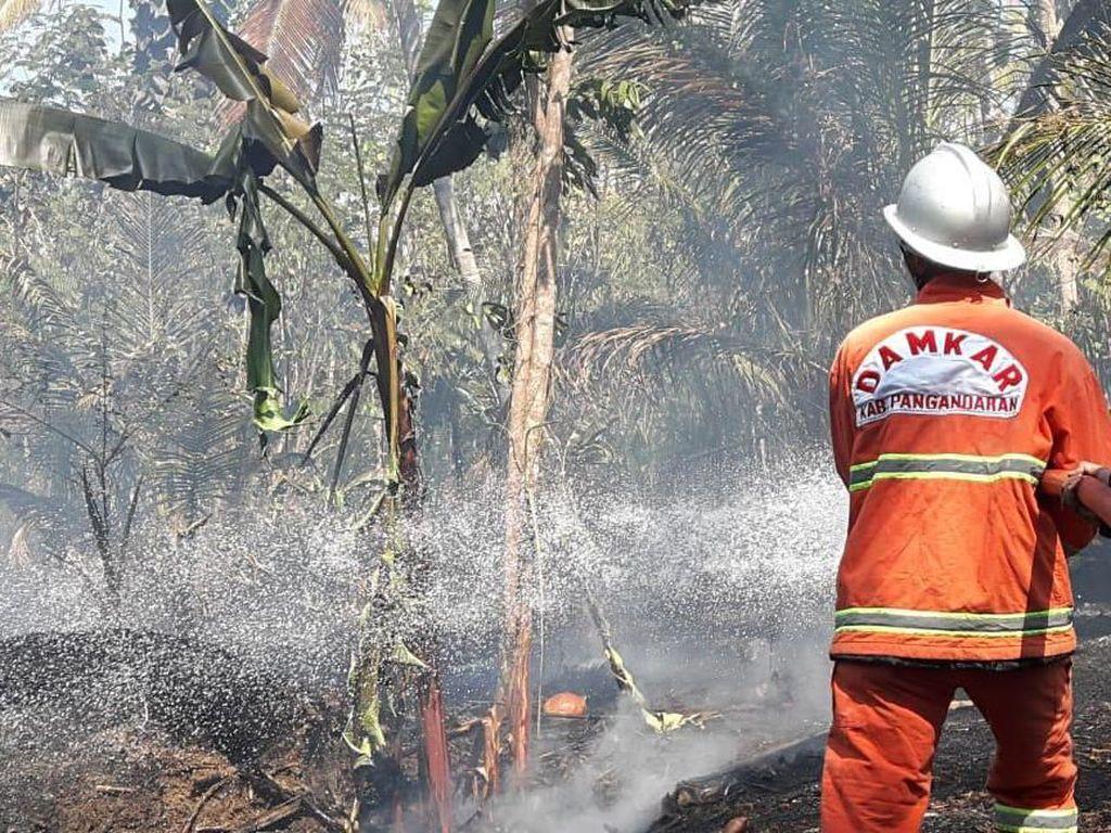 50 Persen Wilayah Pangandaran Kekeringan, Kebakaran Lahan Hantui Warga