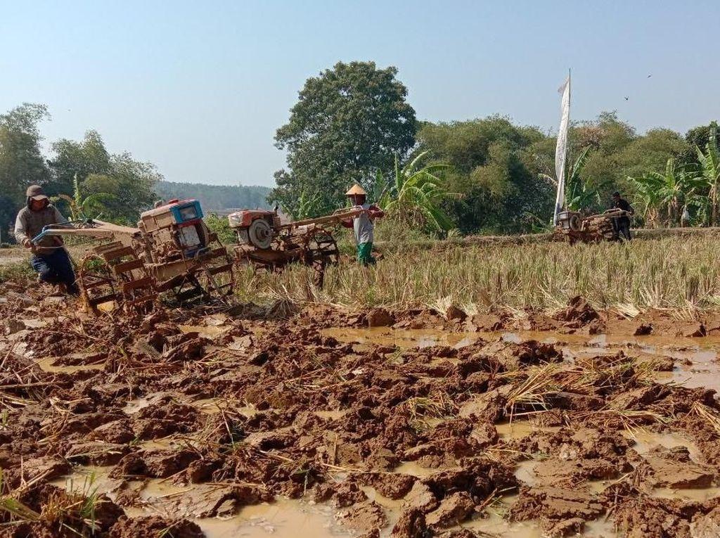 Petani Purwakarta Manfaatkan Bantuan Pompa Tanam Padi