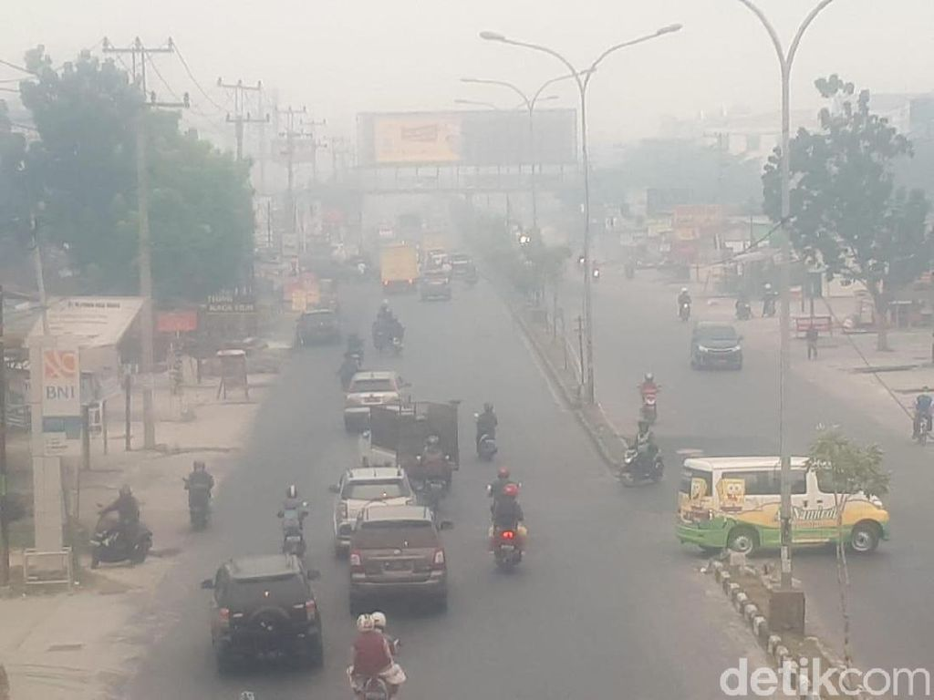 Kabut Asap Kepung Sumatera-Kalimantan, Pengusaha Hilang Omzet 50%