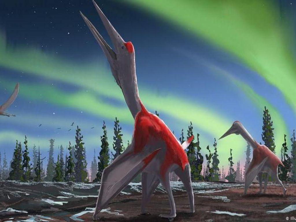 Spesies Baru Dinosaurus Terbang Raksasa Ditemukan di Kanada