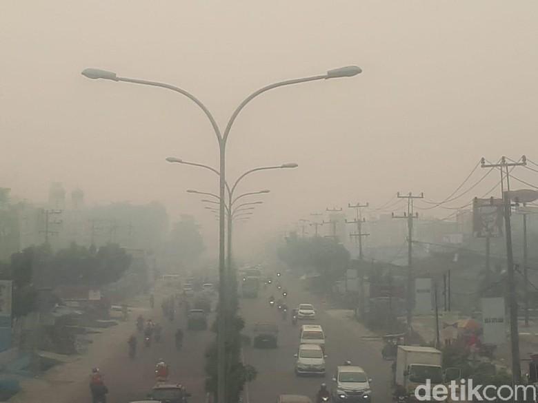 Kabut Asap Makin Pekat di Riau, Jarak Pandang di Bandara Terpengaruh