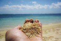 Pasir pantainya tampak dekat (Afif Farhan/detikcom)