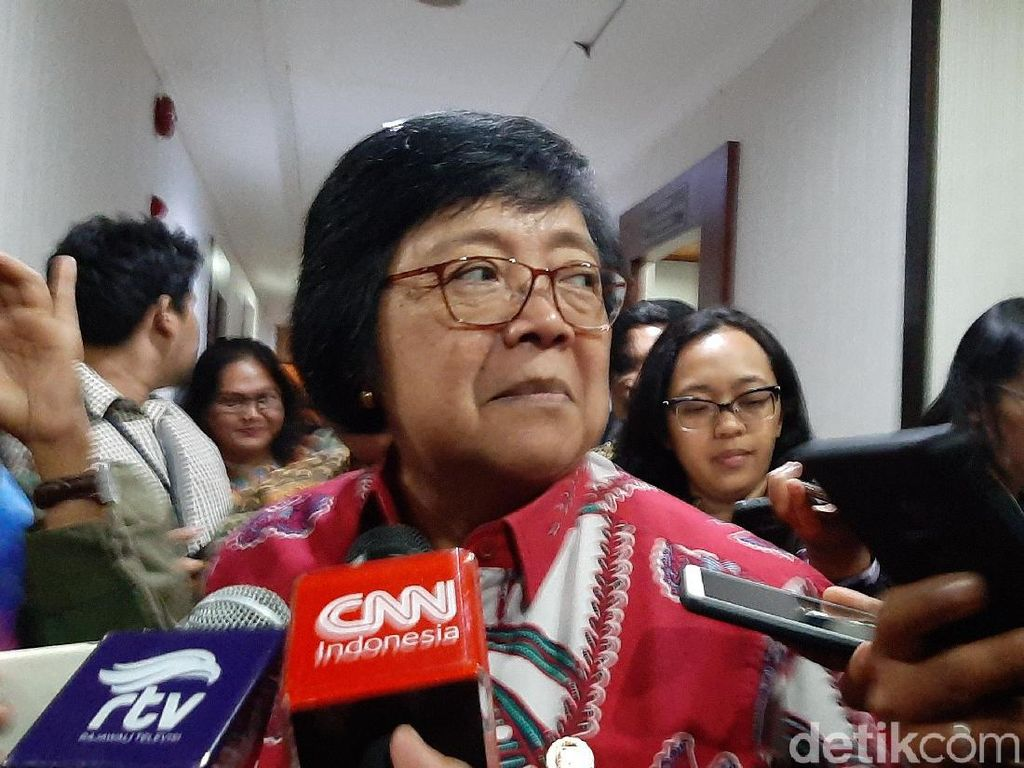 5 Perusahaan Malaysia dan Singapura Penyebab Karhutla di Kalbar-Riau Disegel
