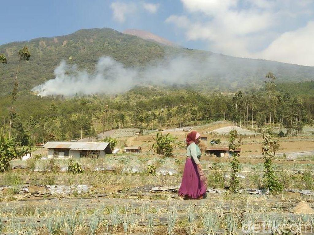 Kebakaran Lereng Gunung Slamet, 500 Personel Gabungan Menuju Titik Api