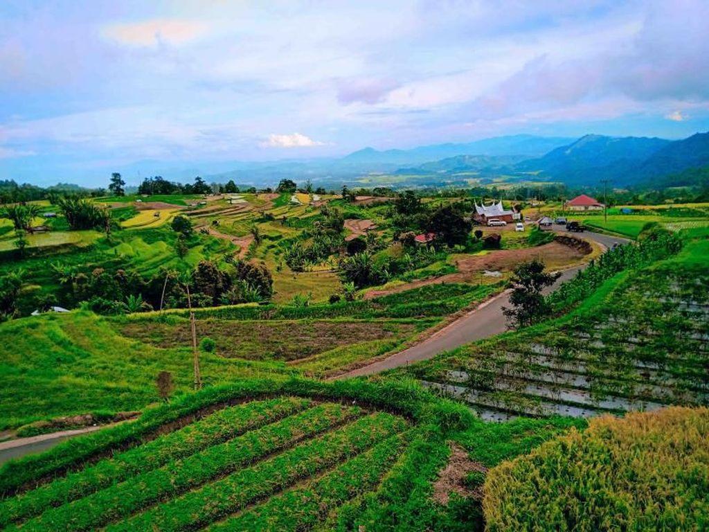 Desa Terindah Sedunia Ada di Sumatera Barat