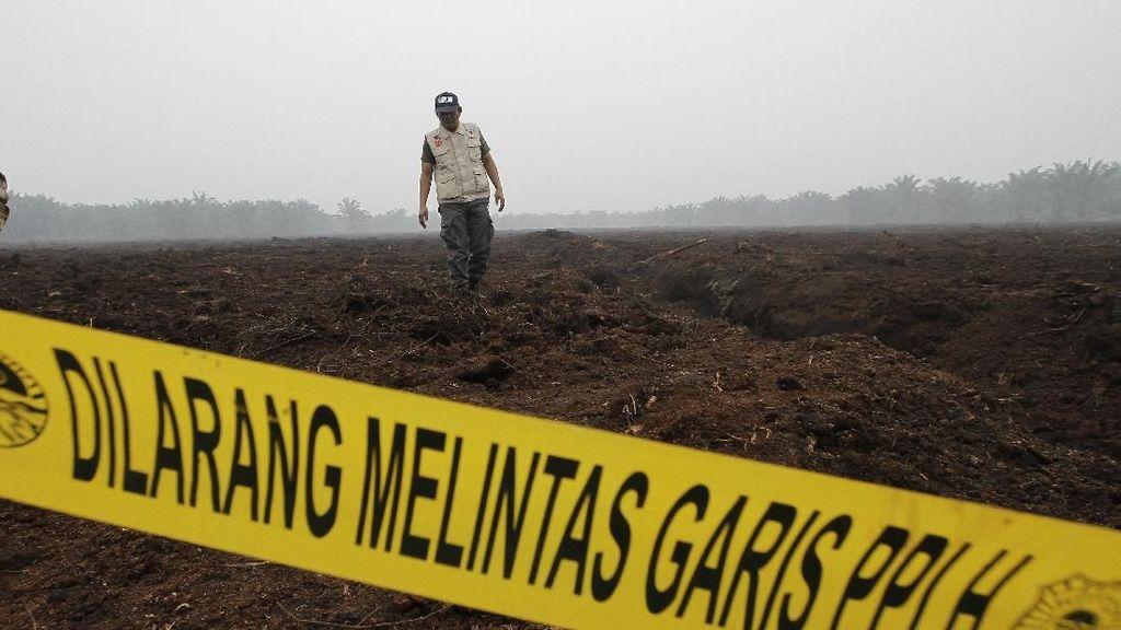 Lahan Perusahaan Asal Malaysia Disegel KLHK