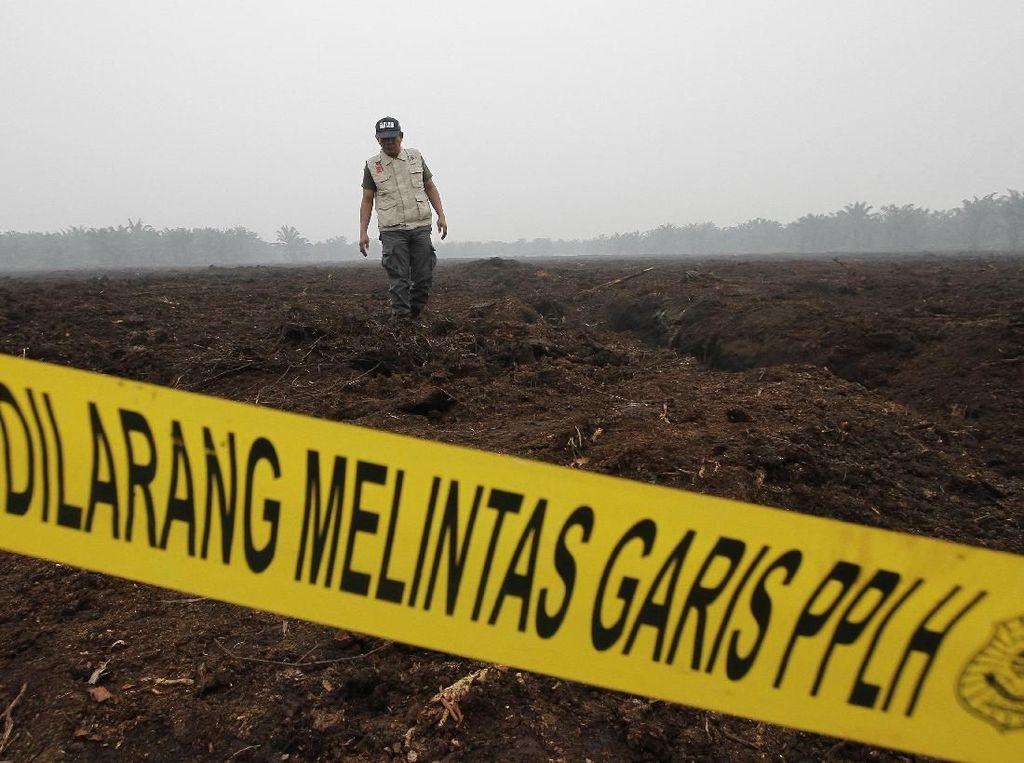 Perusahaan Singapura dan Malaysia Diduga Terlibat Karhutla