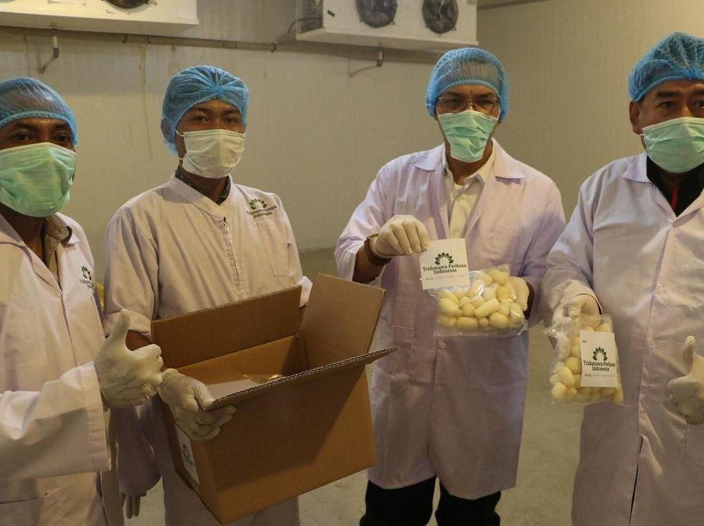 Kementan Ekspor 8,8 Ton Talas Beku Sulsel ke Jepang