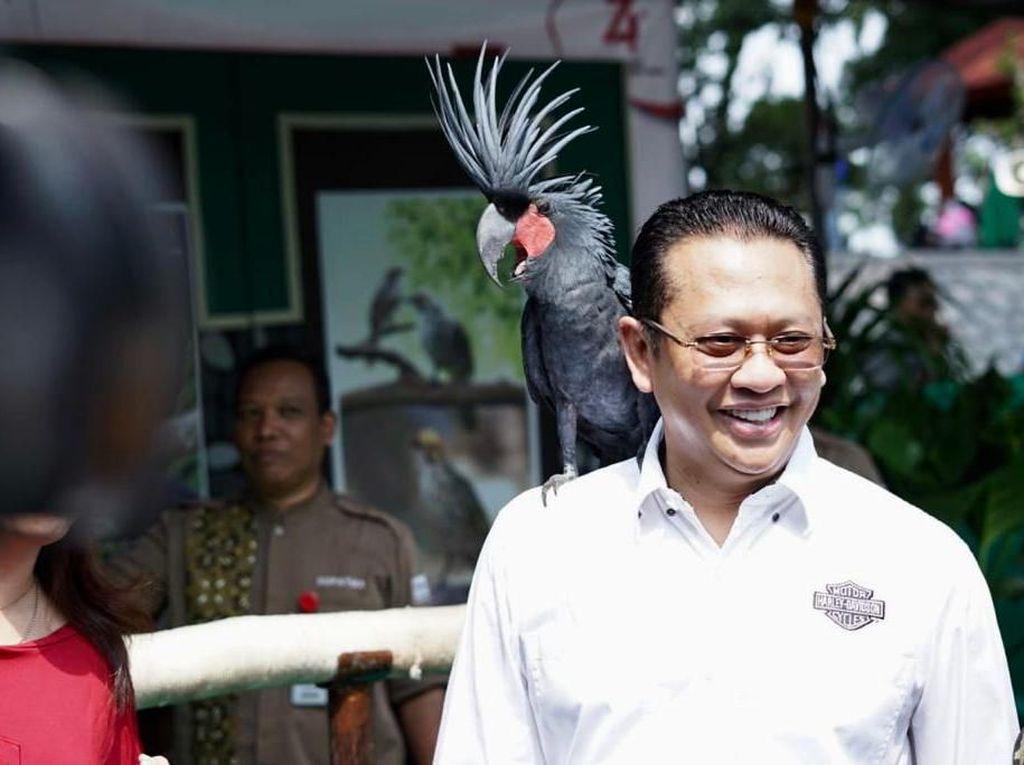 Terpilih Jadi Ketua MPR, Bamsoet Punya Harta Rp 98 M