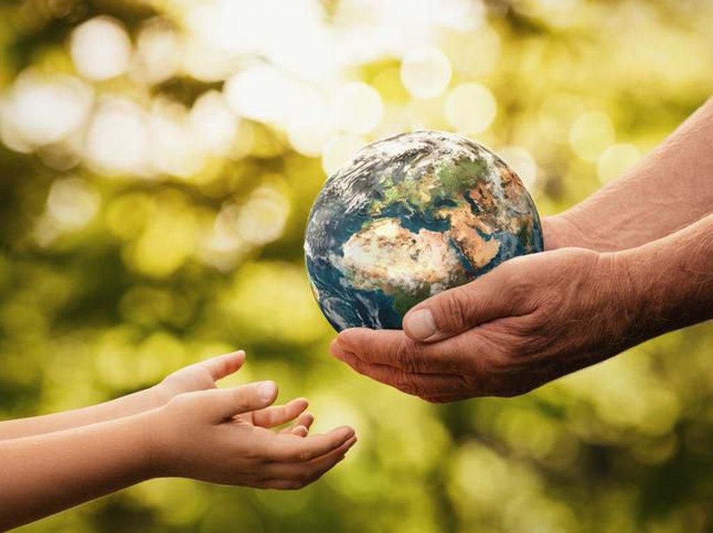 7 Dampak Pemanasan Global Bagi Kehidupan, Lingkungan, dan Ekosistem