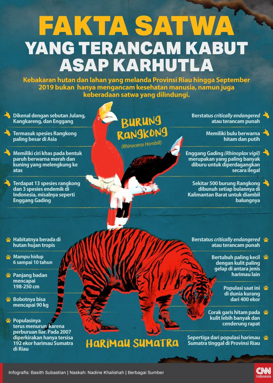 Infografis Fakta Satwa yang Terancam Kabut Asap Karhutla