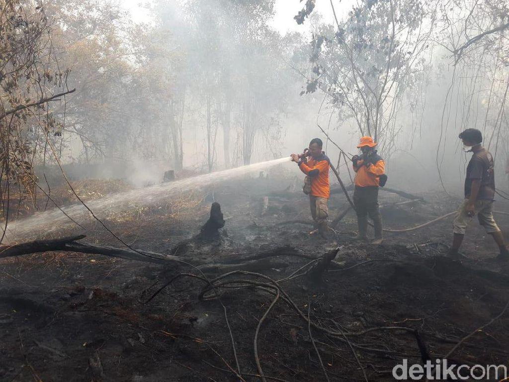Asap Karhutla Masih Pekat, Jarak Pandang di Pekanbaru 500 Meter